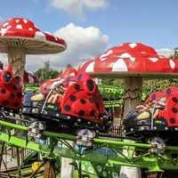 Tayto Park provides plenty of fun for my thrill-seeking family's flying visit