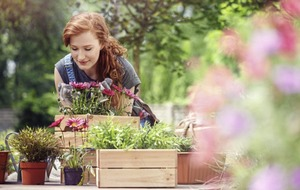 What is horticultural therapy – and who can benefit from it?