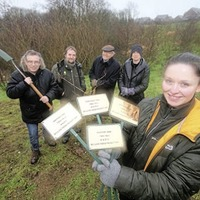 Plan to plant one million trees in Belfast praised by Friends of the Earth