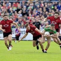 Down are going places under Paddy Tally insists forward Connaire Harrison