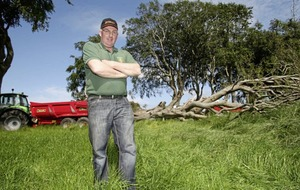 Co Antrim farmer snaps up felled Game of Thrones tree
