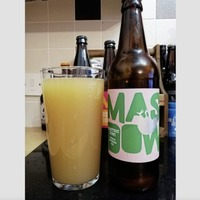 Craft Beer: Electric Kiwi and Moon Beam more than pretty names from Mash Down