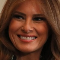 Unusual carving of Melania Trump raises eyebrows