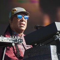Stevie Wonder backs attempt to hold record-breaking guitar lesson