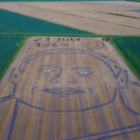 Watch: Artist mows giant portrait of Neil Armstrong into Italian field