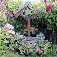 Casual Gardener: John Manley finds rose garden rapture in Rossglass
