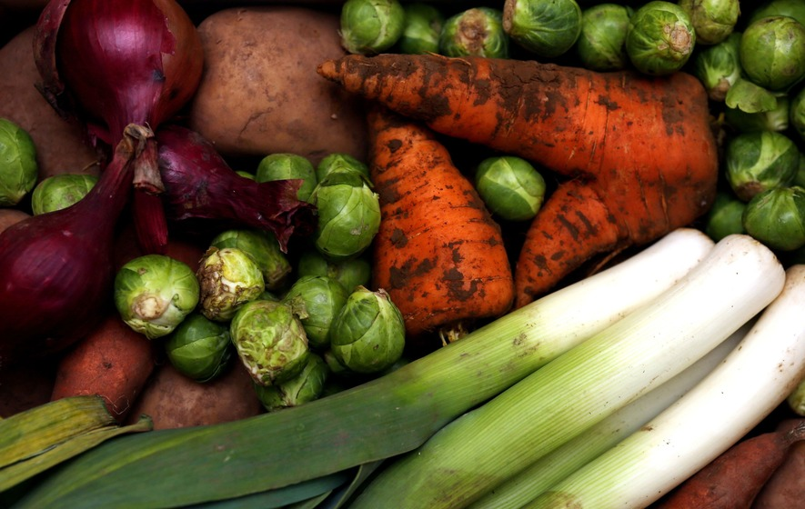 Healthy plant-based diets could reduce diabetes risk, study says