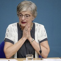 Zappone controversy is omnishambles of Fine Gael's creation, says TD