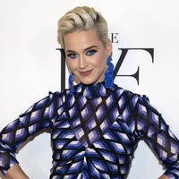 Katy Perry's Dark Horse copied Christian rap song, jury finds