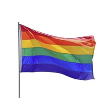 Council refuses to release 'gay flag' vote details