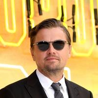 Brad Pitt is an amazing partner, says Leonardo DiCaprio