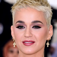 Katy Perry and others ordered to pay 2.78 million dollars for copying song