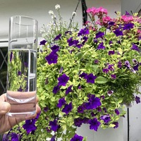 Will your hanging basket survive on a glass of water a day?
