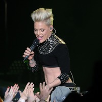 Plane carrying singer Pink's crew 'crash-lands in Denmark'