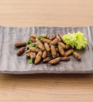Nutrition: Would you eat insects sold in the supermarket?