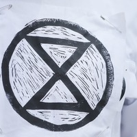 Extinction Rebellion to benefit from collaboration by ska veterans