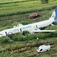Hero pilot says landing in Russian cornfield 'was only hope'