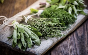 Harvesting herbs: how to make 5 easily homegrown herbs last beyond summer
