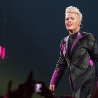 Pop star Pink latest celebrity to defend Harry and Meghan