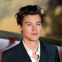 Harry Styles talks about horrific magic mushrooms incident while recording album