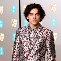 Timothee Chalamet debuts bowl haircut and British accent in The King teaser