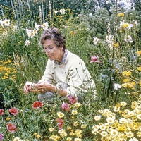 Casual Gardener: Beth Chatto and a life dedicated to plants