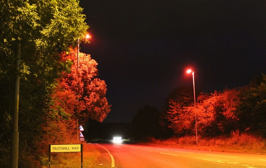 Street Lights Glow Red To Help Bats Cross The Road