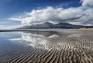 Stephen Colton's Take on Nature: Shore birds in the shadow of Slieve Donard's