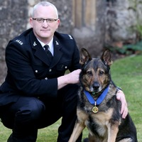 Heroic police dog hailed as Holyrood plans to follow Westminster's lead
