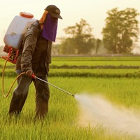 Restrict pesticides to prevent suicides in poorer countries, researchers say