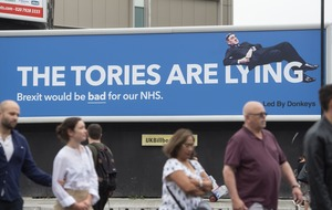 Reclining Jacob Rees-Mogg features on poster claiming Tories are lying about NHS