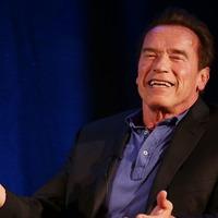 Schwarzenegger invokes Crocodile Dundee with knife jibe at Stallone