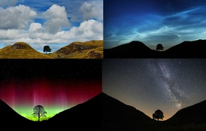 The sky's the limit for photographer with one eye on the stars