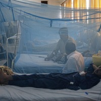 Pakistan battling outbreak of dengue fever as health officials confirmed more than 10,000 cases and 20 deaths