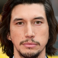 Lost dog found after Adam Driver appeals for help finding it