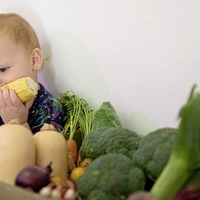 Nutrition: Nine ways to get picky children to eat more vegetables