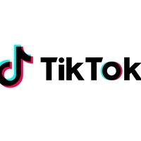 TikTok bans paid political adverts