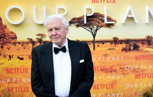 Sir David Attenborough calls for 'nature network' to prioritise wildlife