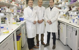 Major grant for Queen's scientists to research heart condition