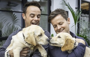 Why Ant and Dec cuddled adorable puppies named after them