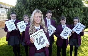Pupils' `staggering and incredibly inspiring' badger artwork chosen for new book