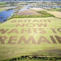 Urgent clarity required on future divergence within UK