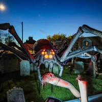 Family home transformed into house of horrors for Halloween
