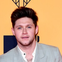 Niall Horan reveals he has written a song with Lewis Capaldi