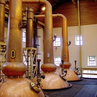 How local distilleries are constrained by licensing laws