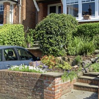 Gardening: Boost wildlife and reduce pollution by planting a hedge