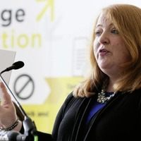 Alliance withdraw from pro-Remain campaign launch in row over candidate endorsements