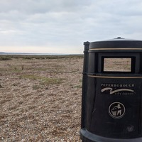 Bin travels 70 miles from city to seal colony beach