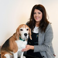 Beagle Luigi crowned pet slimming champion after giving up Sunday dinners