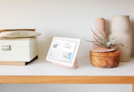 Google Nest Hub display feature inspired by bats and dolphins
